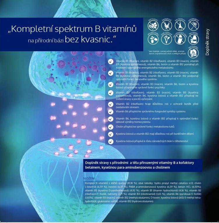 Vitamín B komplex v přírodním doplňku stravy Pro Vita B Complete