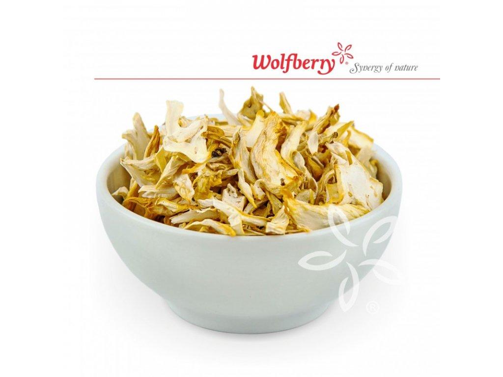 Wolfberry Hlíva ústřičná - sušené houby 20 g