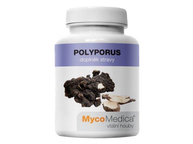 polyporus vitalni