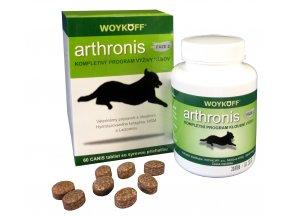 arthronis fáze 2