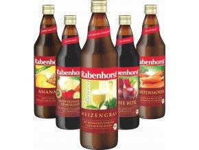 Rabenhorst 5 denní detoxikační kúra
