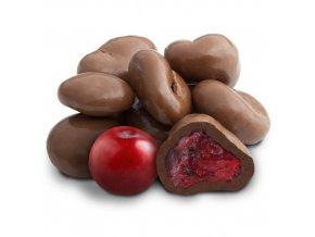 brusinky v čokoládě