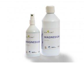 magnesium 3 1