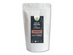 Phyto Protein Basic - jahoda 300 g