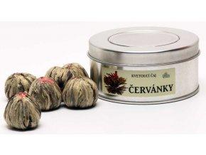 Grešík Červánky kvetoucí čaj v plechu 7 ks