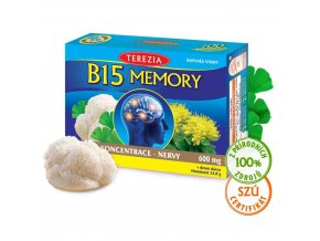 b15 memory 60 suroviny web 1280px