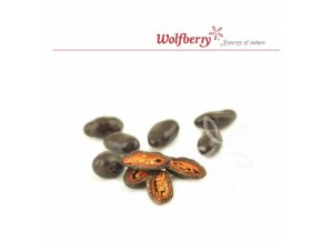 Wolfberry Bio Kustovnice čínská v hořké čokoládě 100 g