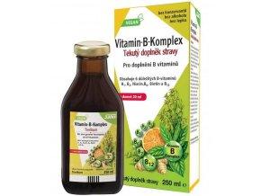 Floradix Vitamin-B-Komplex 250 ml