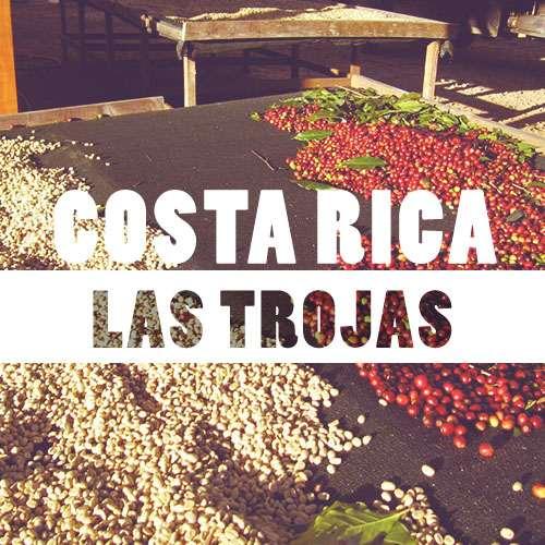 Coffeespot Costa Rica Las Trojas Balení: 250g