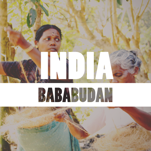 Coffeespot India Bababudan Balení: 250g