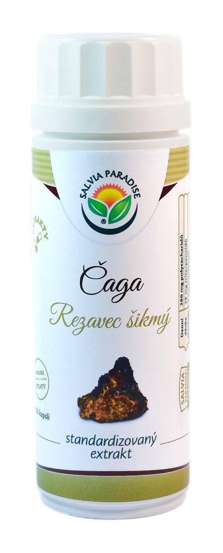 Salvia Paradise Čaga - Rezavec šikmý standardizovaný extrakt kapsle 100 ks