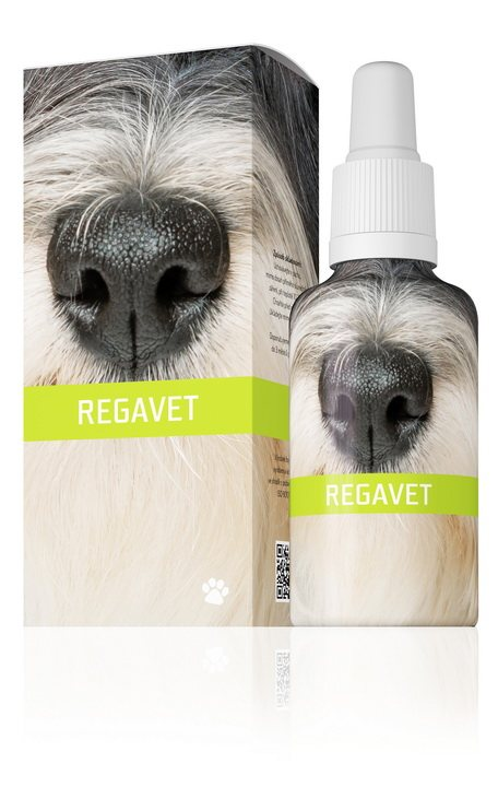 Energy Regavet 30 ml