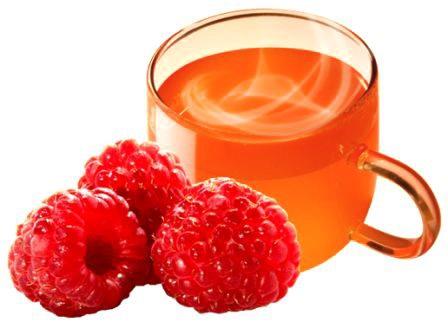 Catus Hot and Ice Drink Malina 1 ks