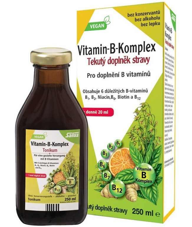 Salus Haus Floradix Vitamin-B-Komplex 250 ml