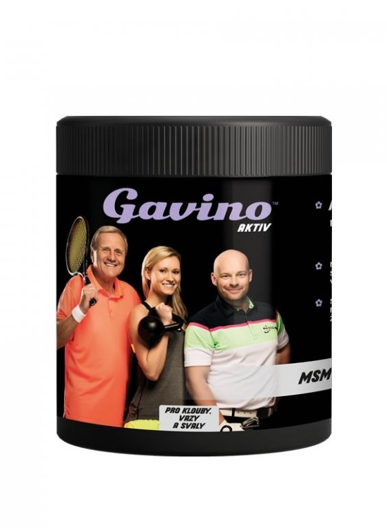 Malbucare s.r.o. Gavino AKTIV MSM 700 g