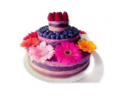 raw-narozeninovy-dort