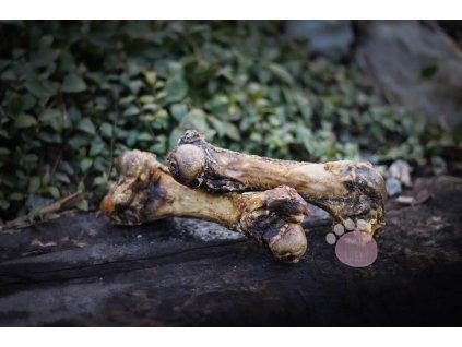 bravčová špiková kosť