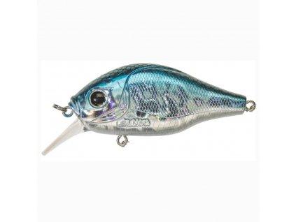 15938 dogora 6 5cm f blue alive