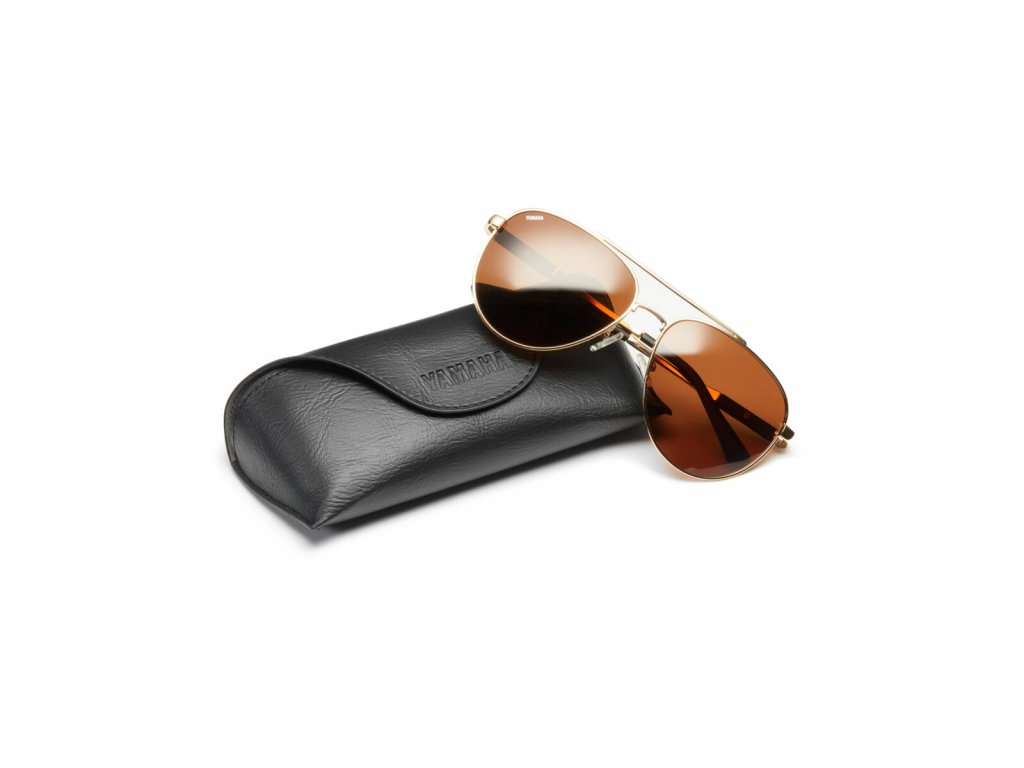 N20 PJ105 D0 00 FS SUNGLASSES AVIATOR BROWN Studio 001 Tablet