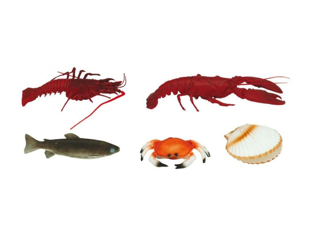 Řeznická potravinářská atrapa mořské plody a pstruh