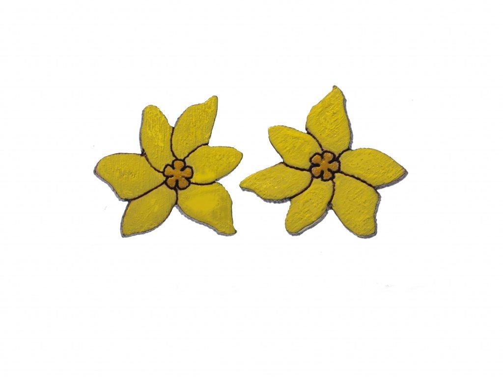 Drevene nausnice Narcis