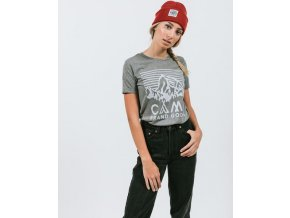 HERITAGE LOGO RELAXED T SHIRT TRI GREY 4