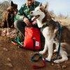 accessories dog leash 7 1024x1024