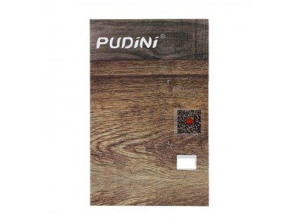 pudini2