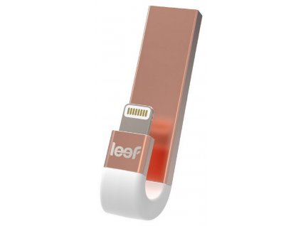Leef iBRIDGE3 64 GB Gold