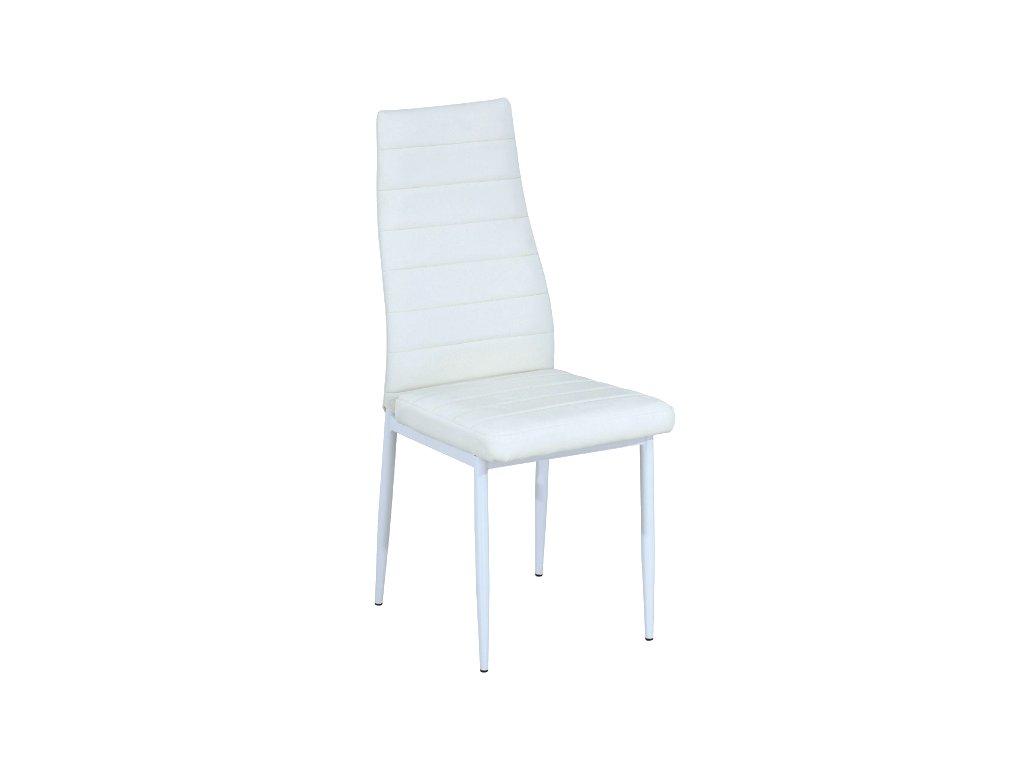 Židle H261 bílá/bílá