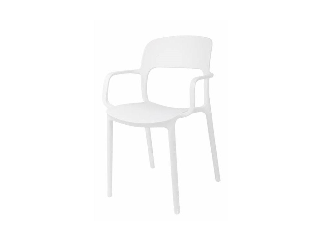 Židle s područkami FLEXI bílá