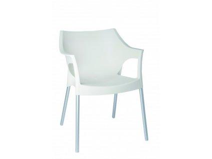 Židle Pole bílá
