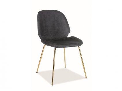Židle Adrien samet zlatá kostra/černá Bluvel 19