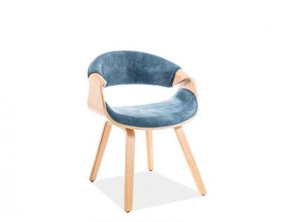 Židle Dakota samet dub kostra/námořní modř polstrování č.169
