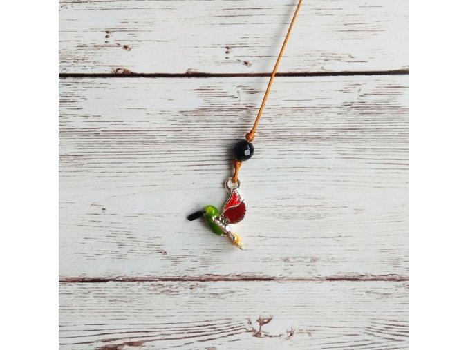kolibřík barevný onyx