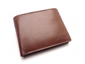 Pánská kožená peněženka W-8053 BROWN