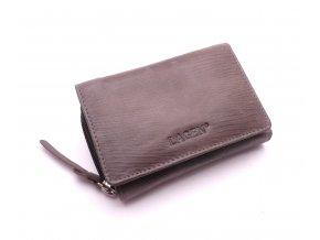 Dámská kožená peněženka HOL/93 GREY