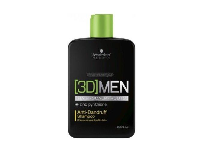 šampon proti lupům velký new