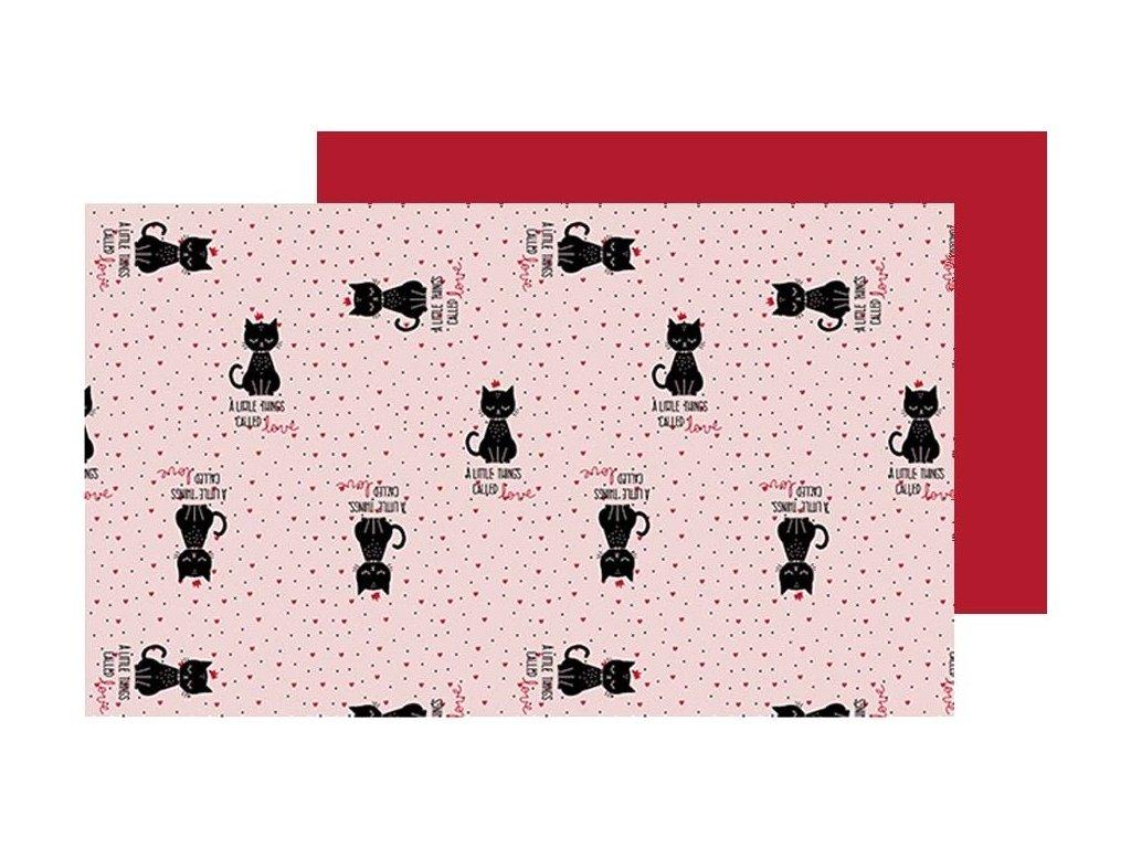 prostírání kočka