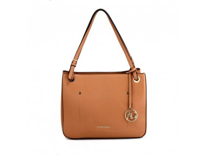 AG00570 Brown 1