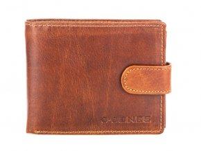 Pánská kožená peněženka hnědá Jennifer Jones 5328 (2)