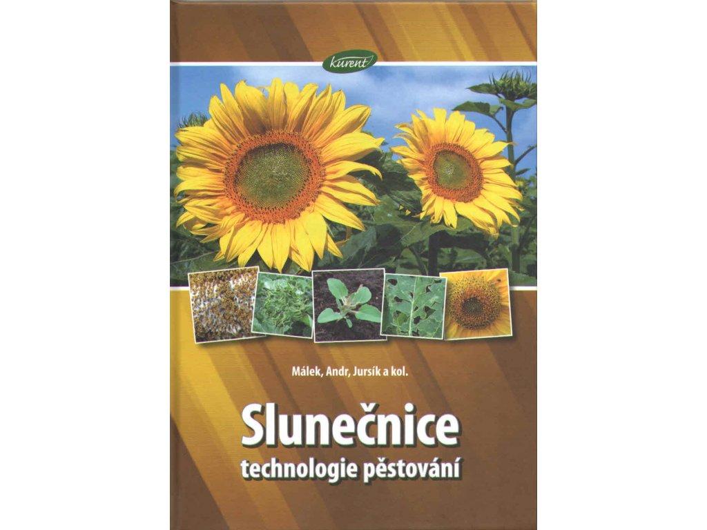 Slunečnice. Technologie pěstování