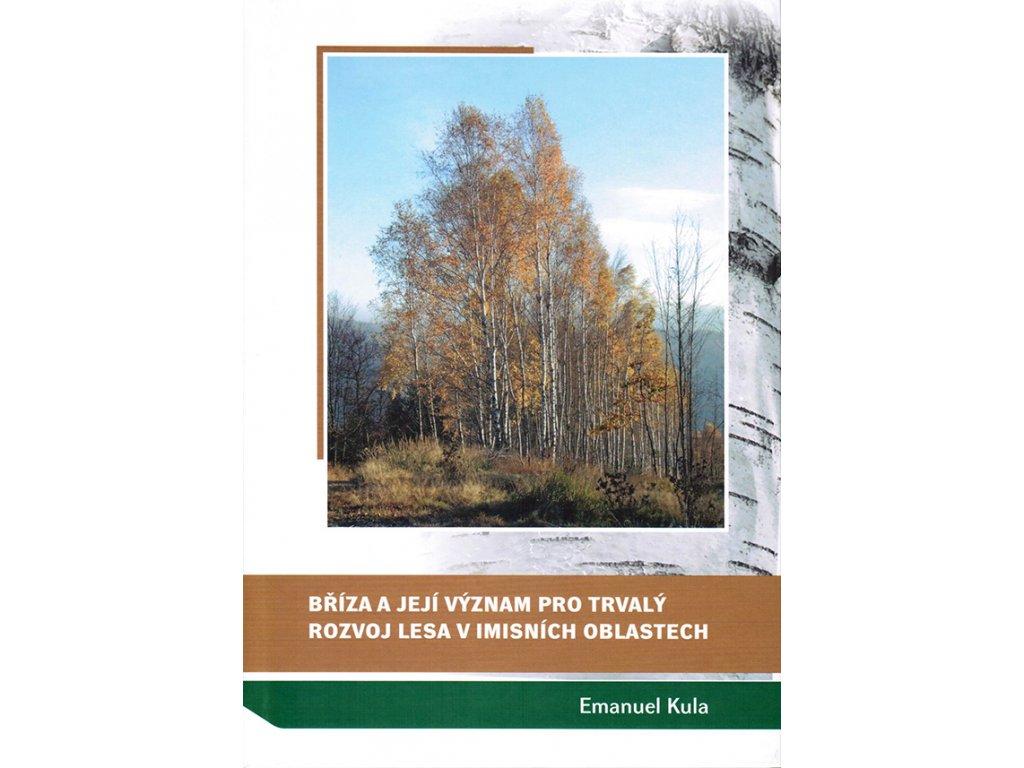 Bříza a její význam pro trvalý rozvoj lesa v imisních oblastech