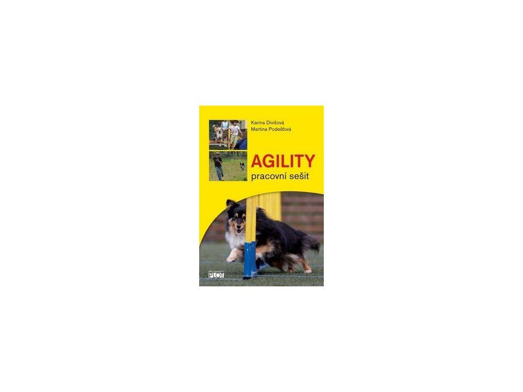 Agility. Pracovní sešit