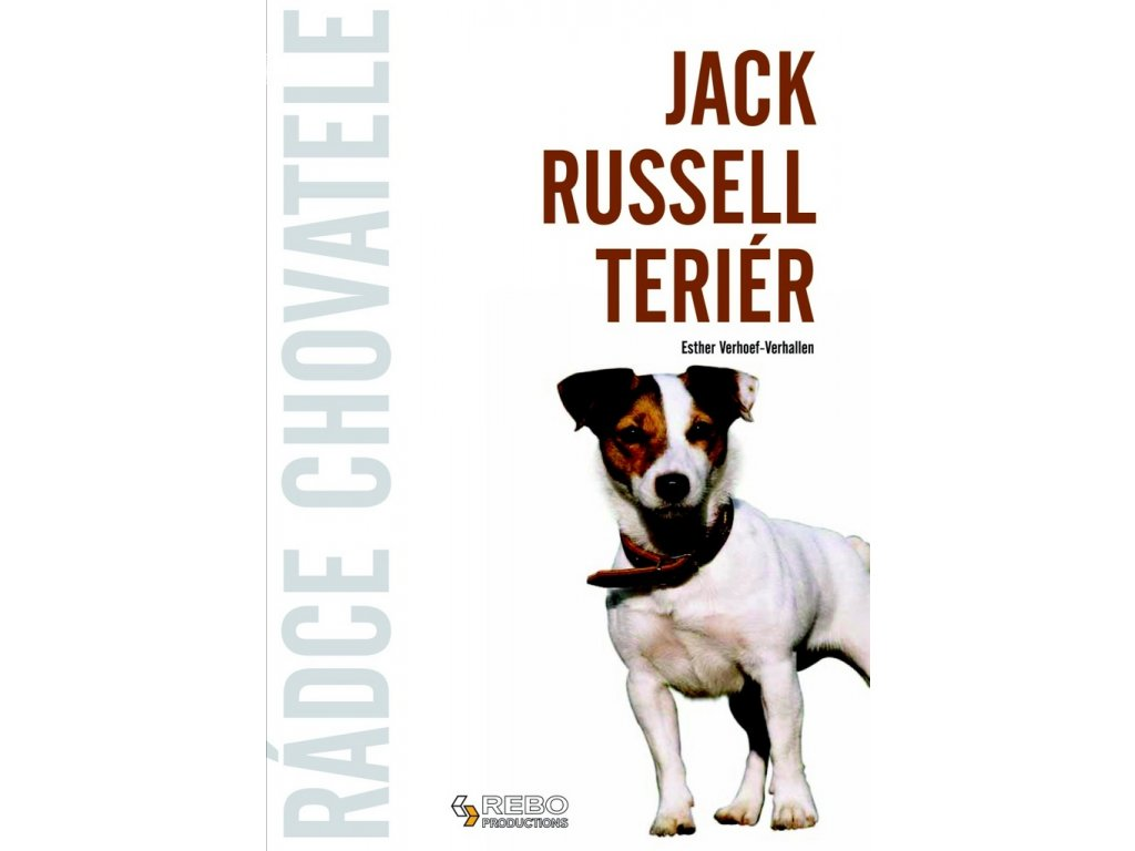 Jack Russell teriér