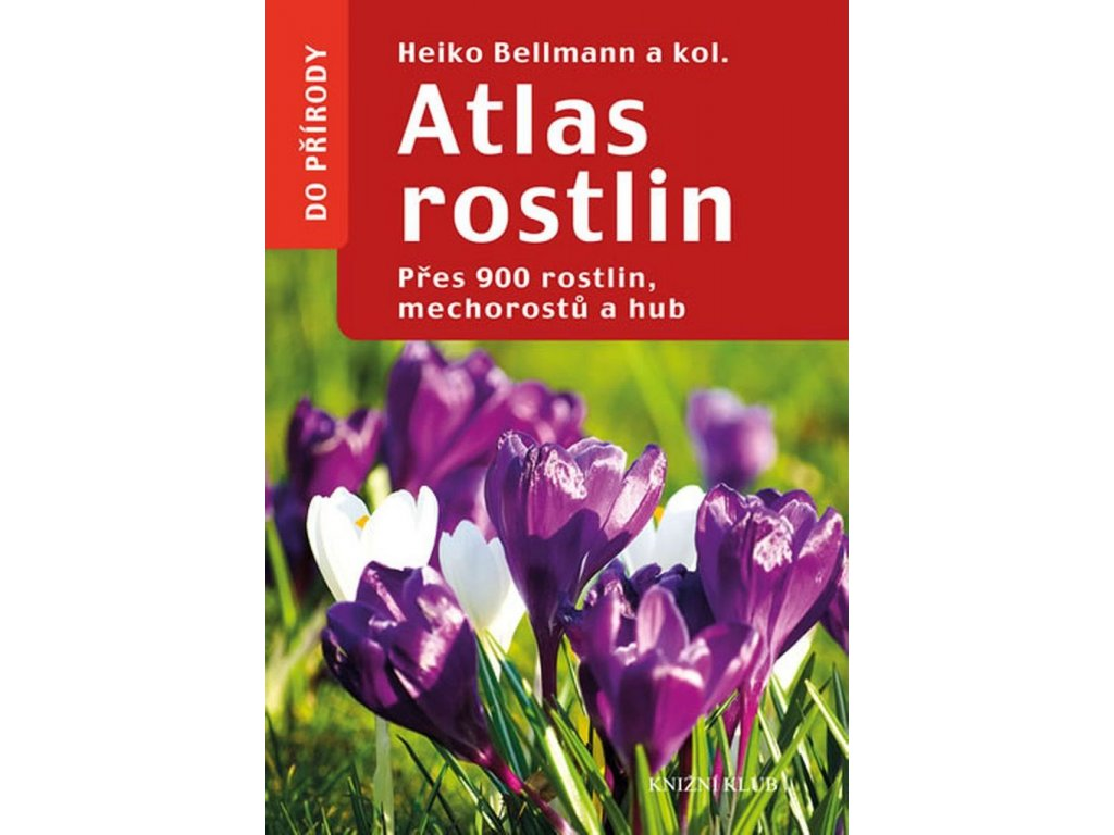 atlasrostlin