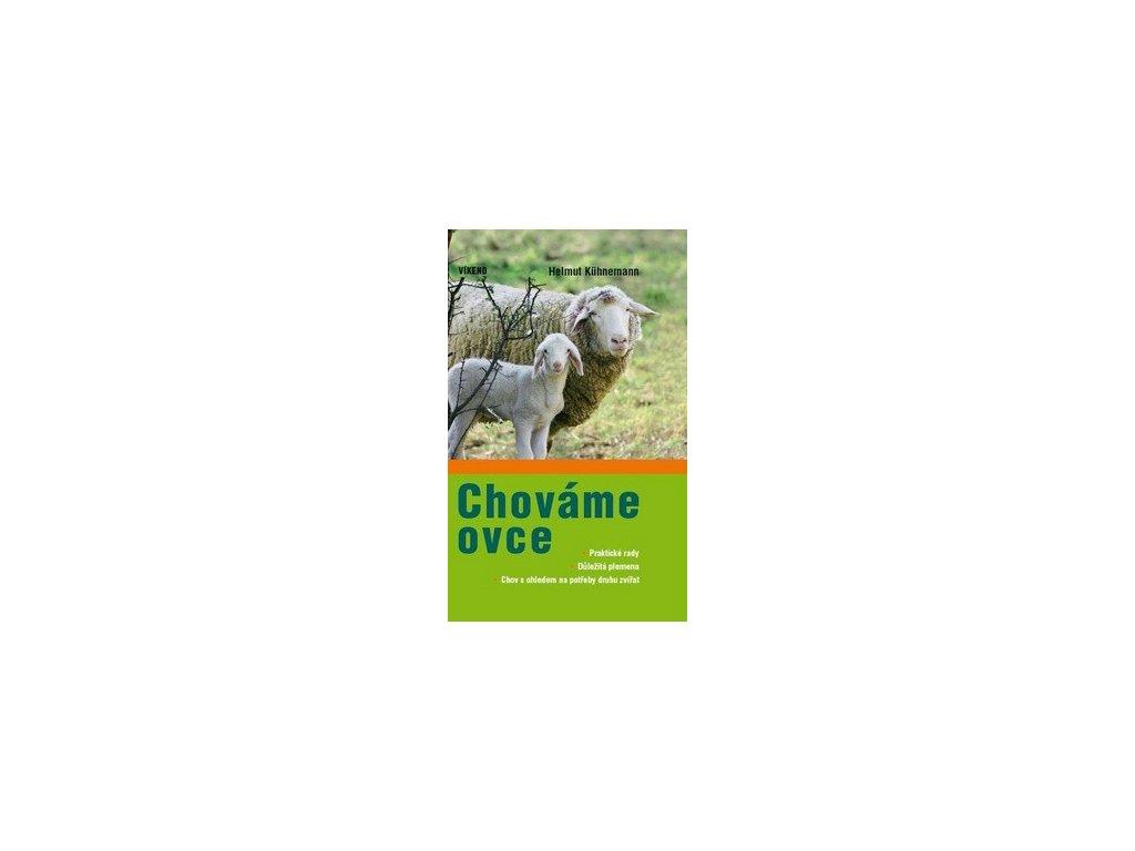 Chováme ovce