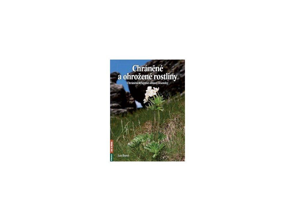 Chráněné a ohrožené rostliny Chráněné krajinné oblasti Jeseníky
