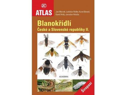 blanokridliII