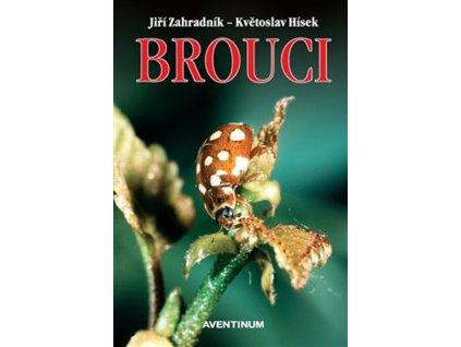brouciavenium